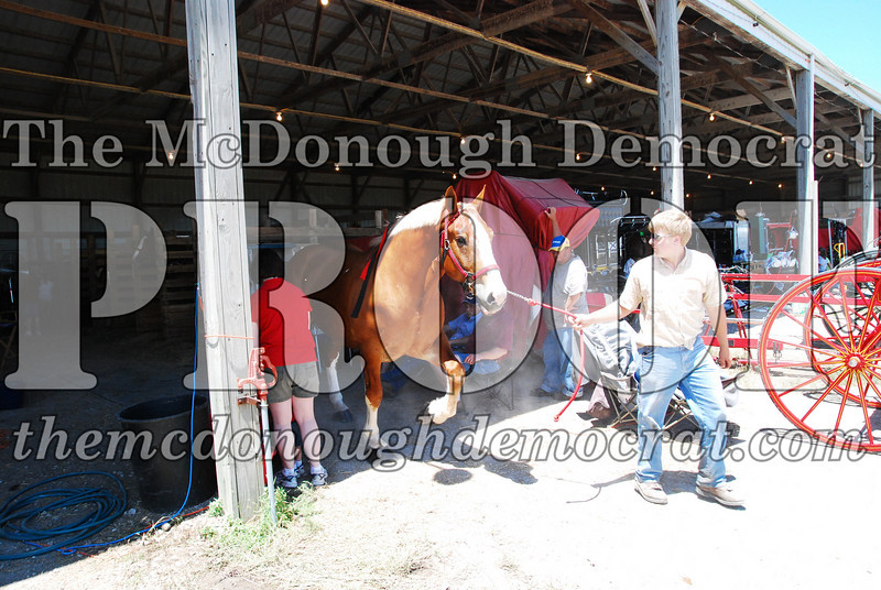 Horse Show 2008 06-28-08 016