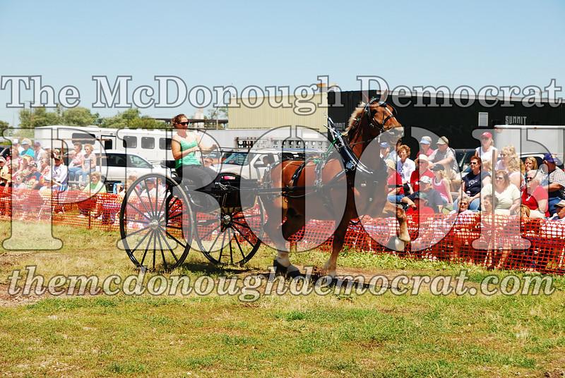 Horse Show 2008 06-28-08 069