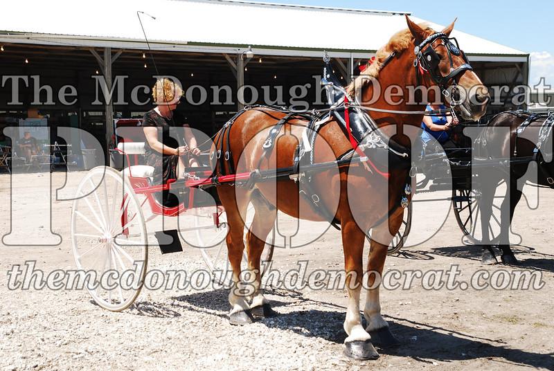 Horse Show 2008 06-28-08 075