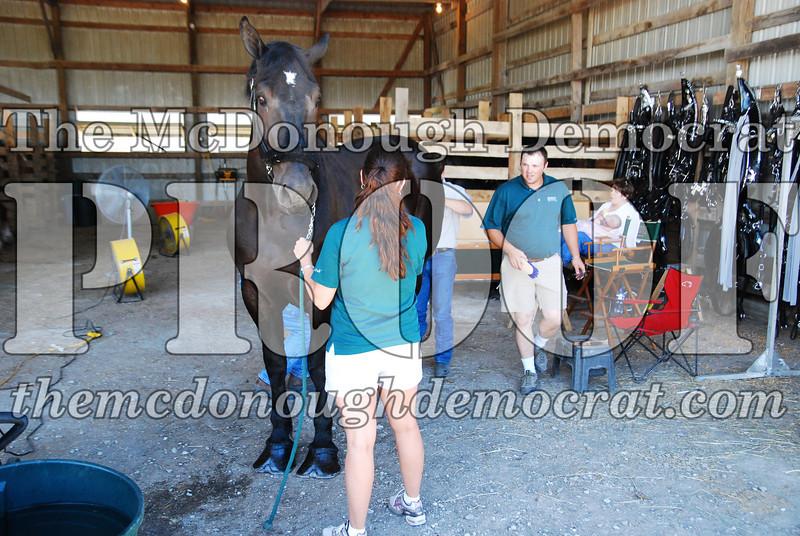 Horse Show 2008 06-28-08 024