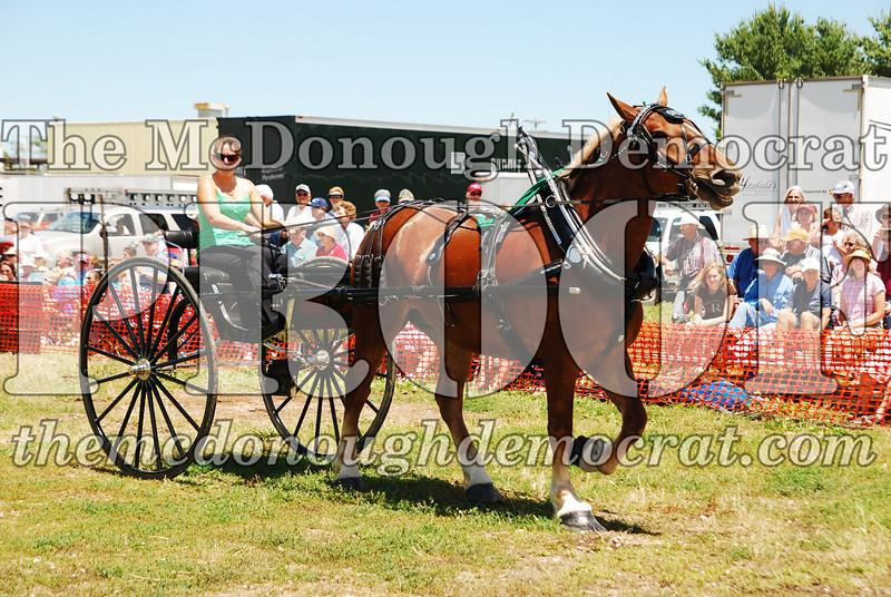 Horse Show 2008 06-28-08 057