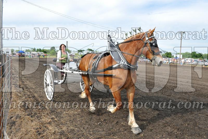 2009 Horse Show 06-26-09 069