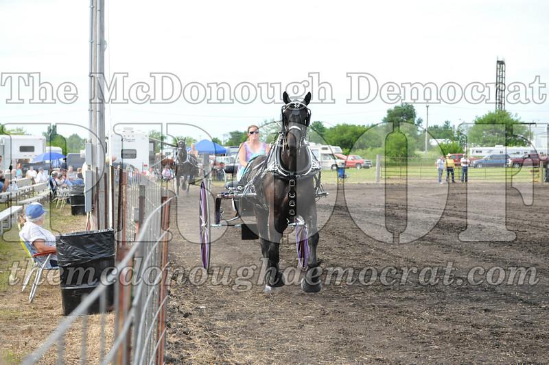 2009 Horse Show 06-26-09 056