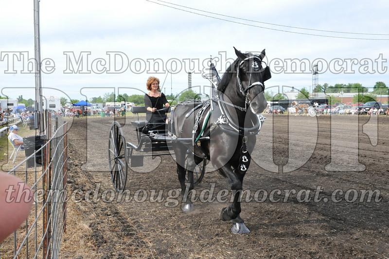 2009 Horse Show 06-26-09 063