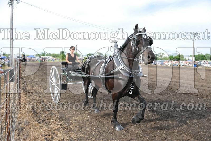 2009 Horse Show 06-26-09 062