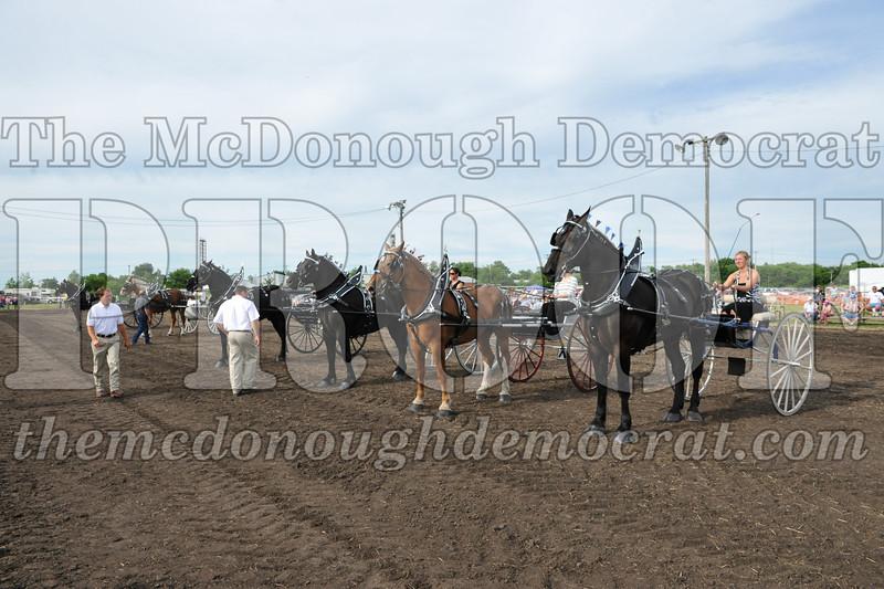 2009 Horse Show 06-26-09 073