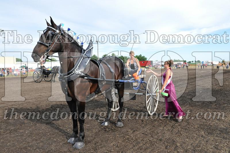 2009 Horse Show 06-26-09 086