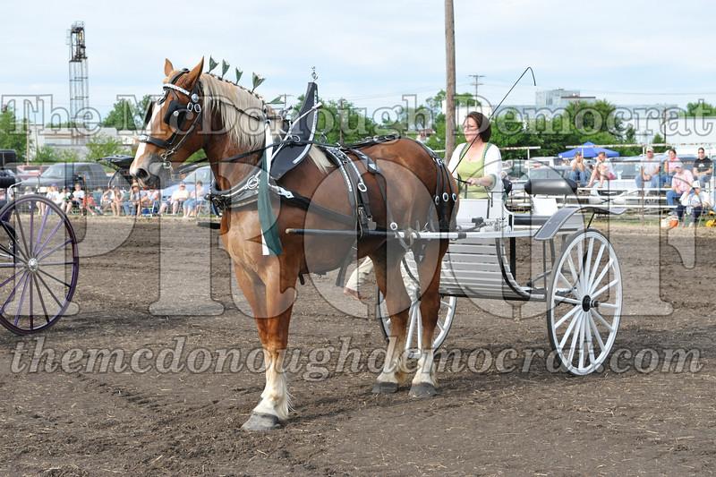 2009 Horse Show 06-26-09 082