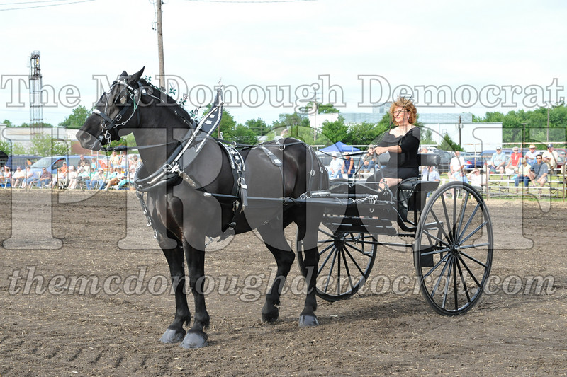 2009 Horse Show 06-26-09 080