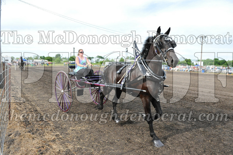 2009 Horse Show 06-26-09 057