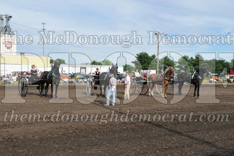 2009 Horse Show 06-26-09 085