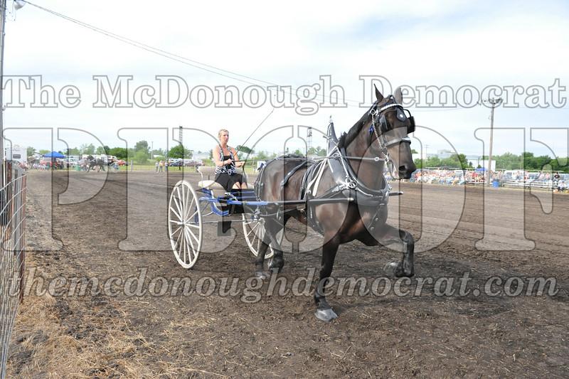2009 Horse Show 06-26-09 059