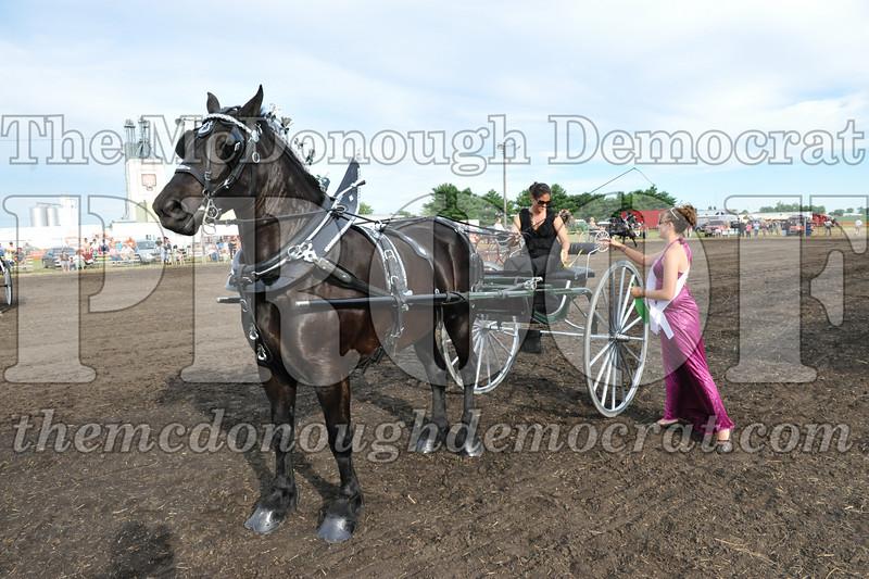 2009 Horse Show 06-26-09 088
