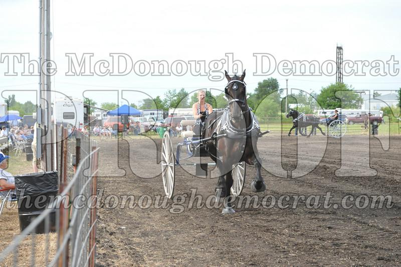 2009 Horse Show 06-26-09 058