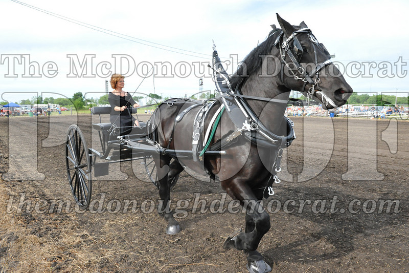 2009 Horse Show 06-26-09 065