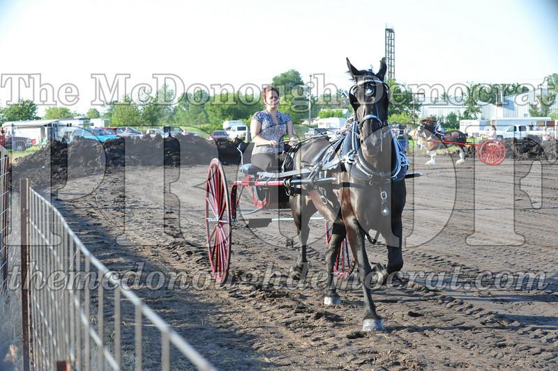 2010 Horse Show 06-25-10 042