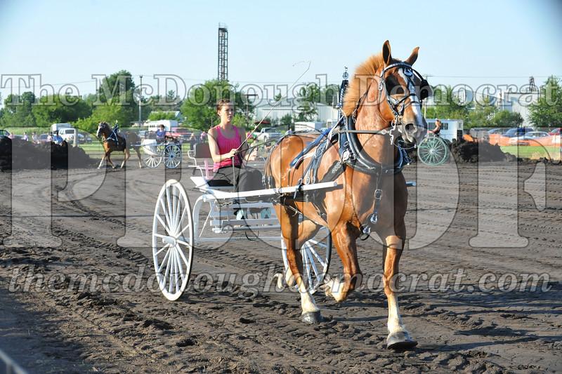 2010 Horse Show 06-25-10 046