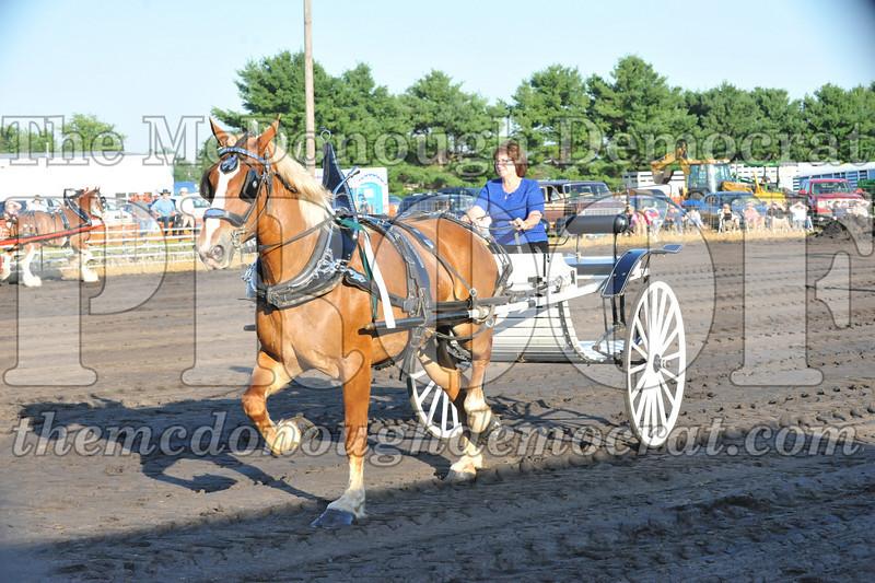 2010 Horse Show 06-25-10 052
