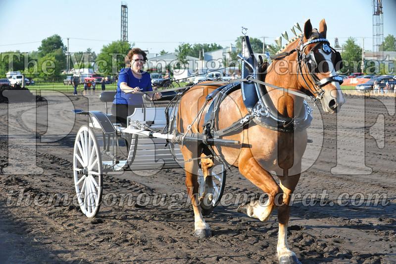 2010 Horse Show 06-25-10 049