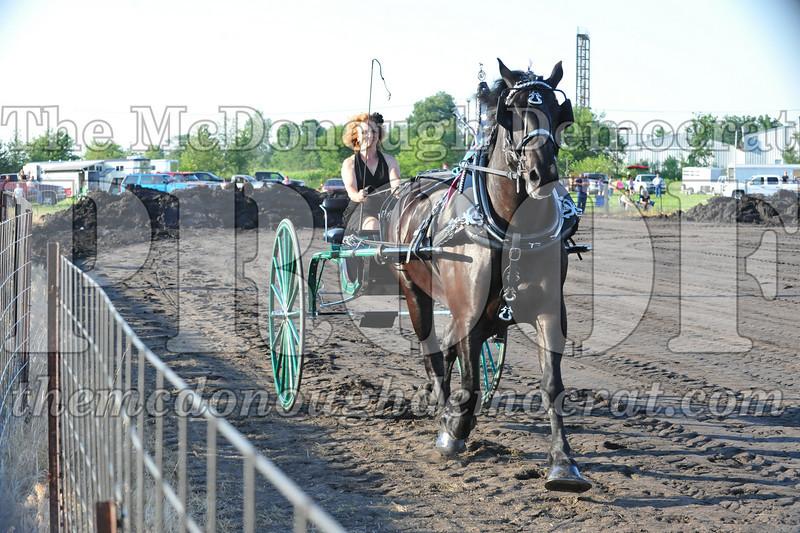 2010 Horse Show 06-25-10 041