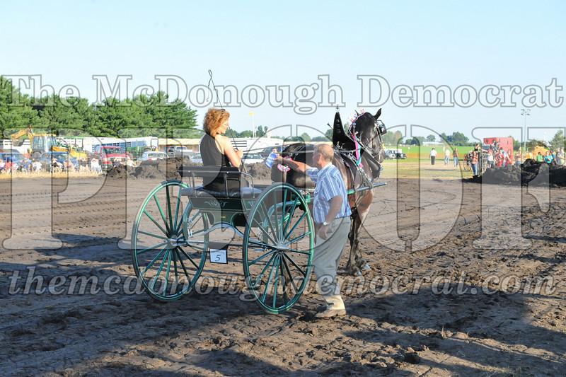 2010 Horse Show 06-25-10 062