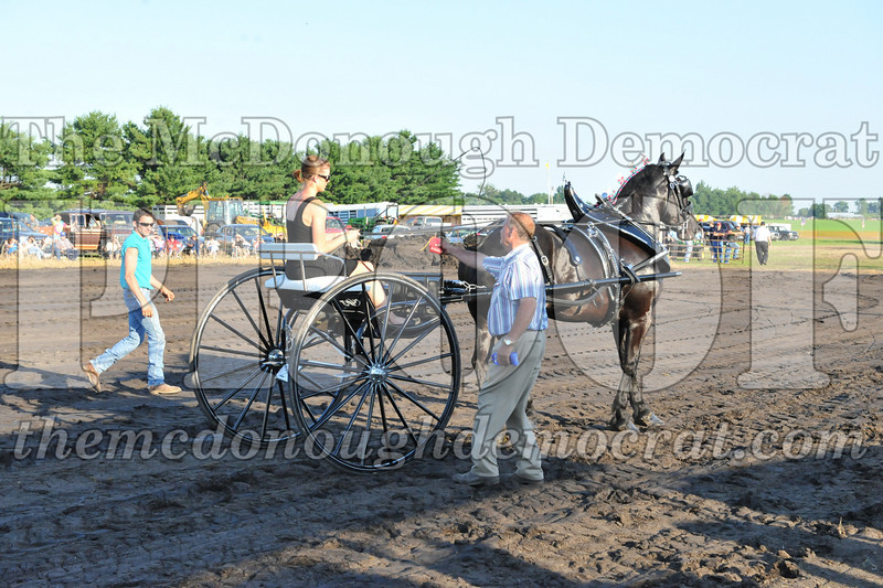 2010 Horse Show 06-25-10 061