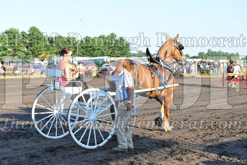 2010 Horse Show 06-25-10 060