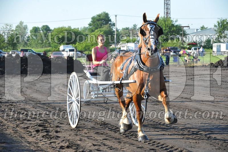 2010 Horse Show 06-25-10 039