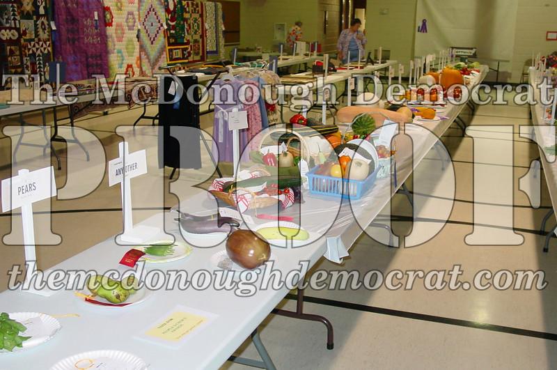 Fall Festival Rec Center Kraft Show 08-25-07 004