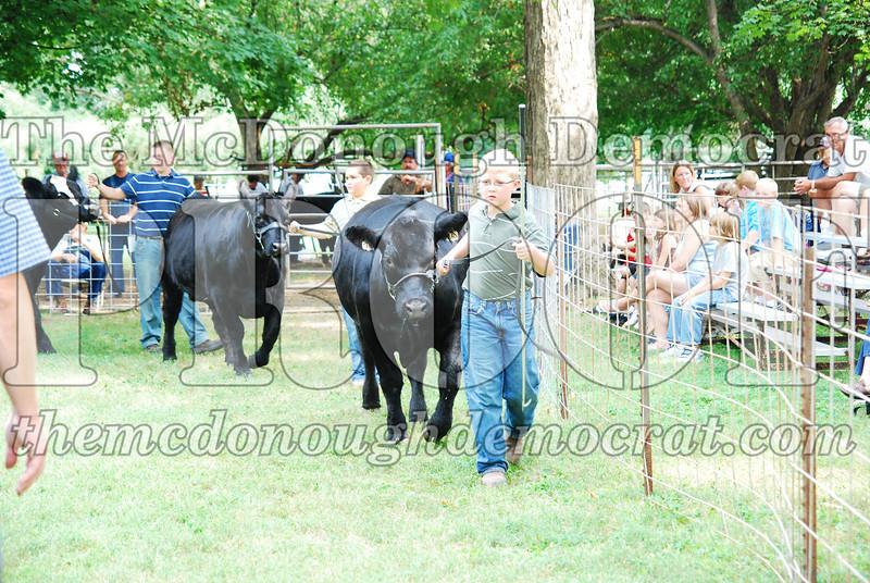 FFA Alumni Livestock Show & Auction 08-20-08 012