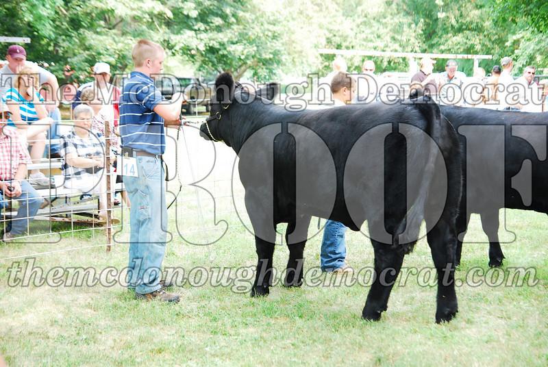 FFA Alumni Livestock Show & Auction 08-20-08 015