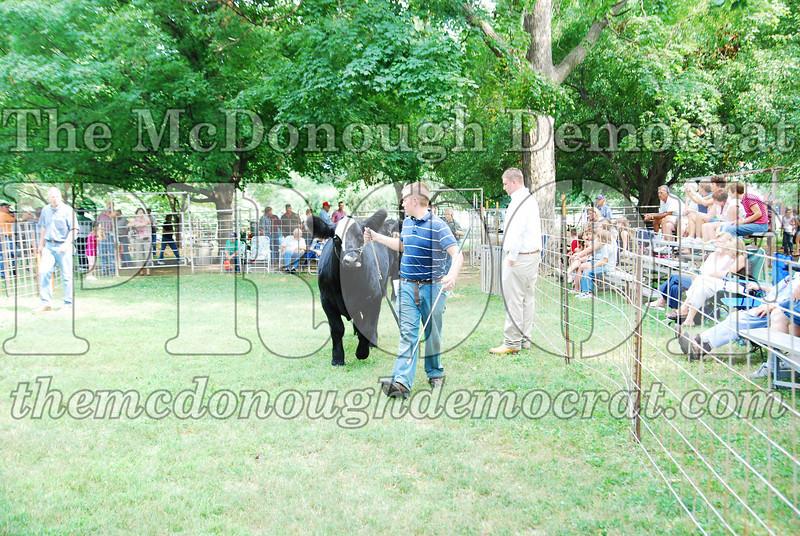 FFA Alumni Livestock Show & Auction 08-20-08 008