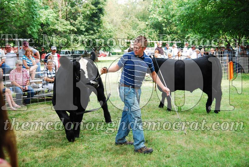 FFA Alumni Livestock Show & Auction 08-20-08 016