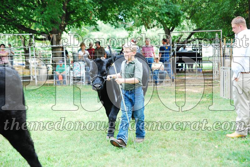 FFA Alumni Livestock Show & Auction 08-20-08 010