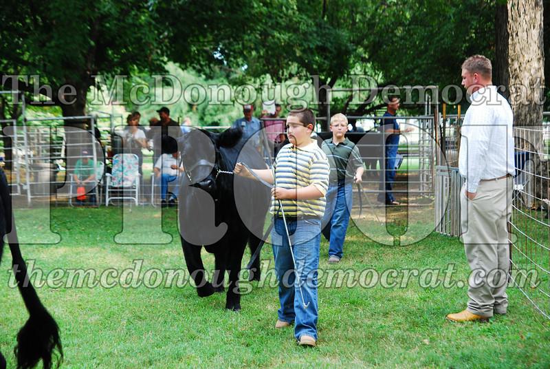 FFA Alumni Livestock Show & Auction 08-20-08 009