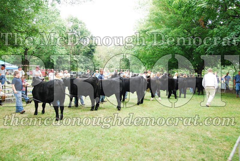 FFA Alumni Livestock Show & Auction 08-20-08 048