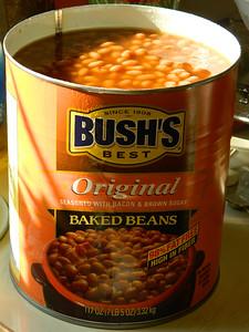 Bushs-3