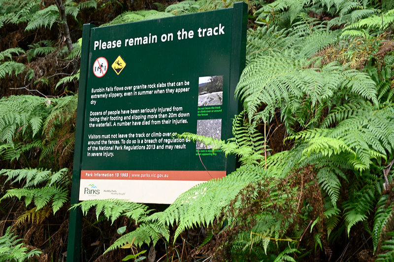Eurobin Falls Track