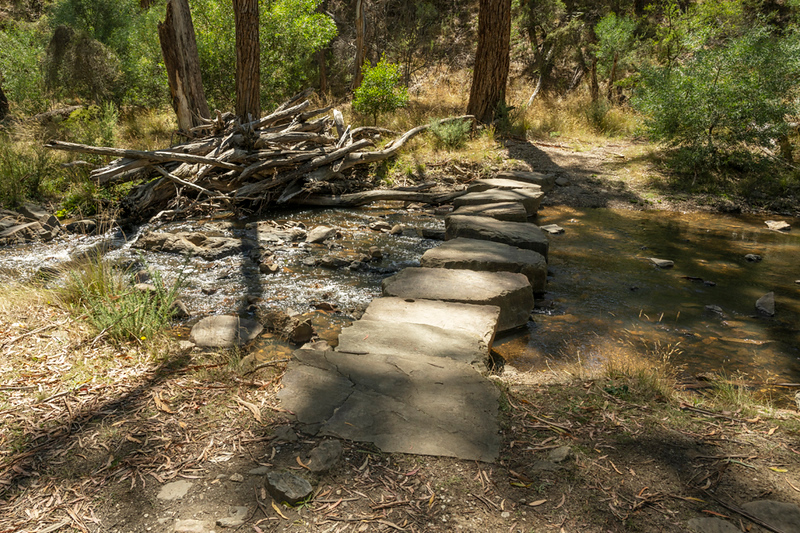 The blue stone stepping stones at Bryces Flat Picnic Ground