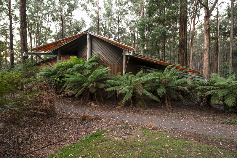 The building nestles in a bed of fern