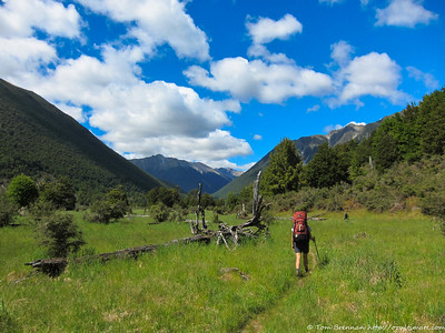 Heading up the Travers Valley