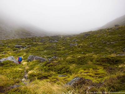 Drizzly foggy morning on the climb up to Travers Saddle