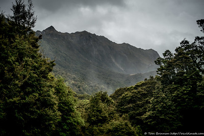 View from Taipo Hut