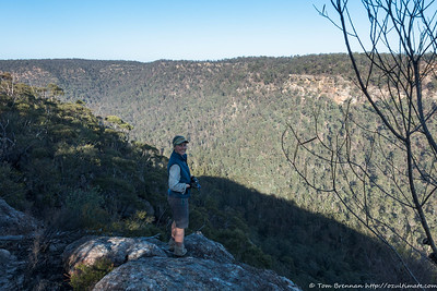 Overlooking Blue Gum Creek from our first lookout