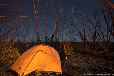 Tent by firelight and starlight