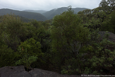 Looking out over the park from Marramarra Ridge