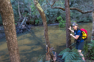 Smiths Creek - should we cross here?!