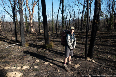 Rachel in burnt bush above the Wollondilly Valley
