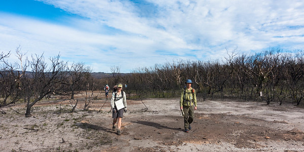 Rocky outcrops above Bundundah Creek