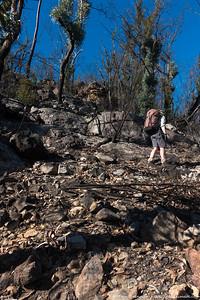 Rachel on the steep ridge